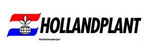 hollandplant